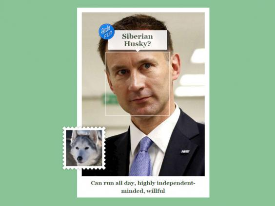 jeremy_hunt_dog.jpg
