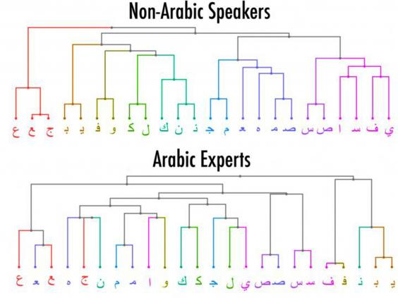 visual-arabic-speakers.jpg