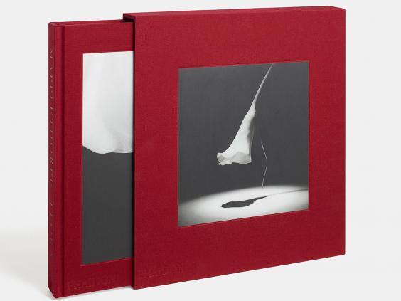 Mapplethorpe-book-cover.jpg