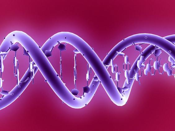 20-DNA-molecule-SciencePhotoLibrary.jpg