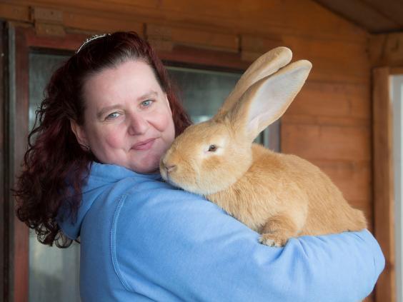 giant-rabbit-1.jpg