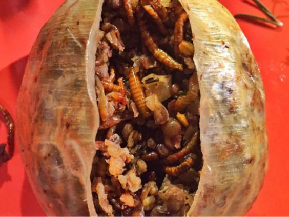 Mealworm-Haggis.jpg