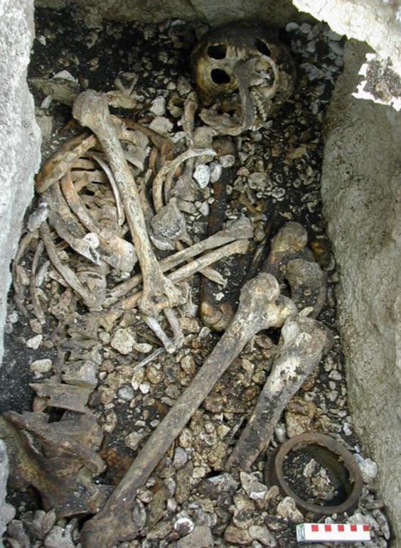 Ireland-bones-2.jpg