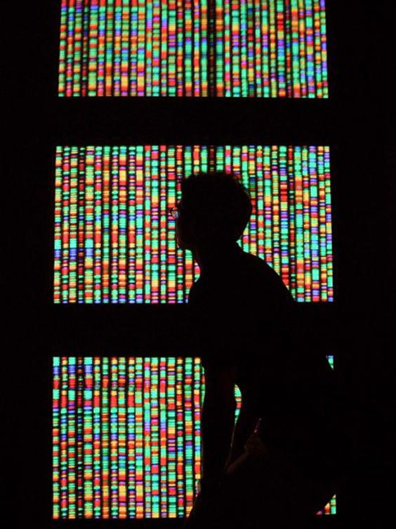 17-human-genome-get.jpg