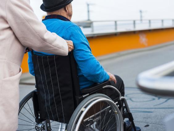 wheelchair-rex.jpg