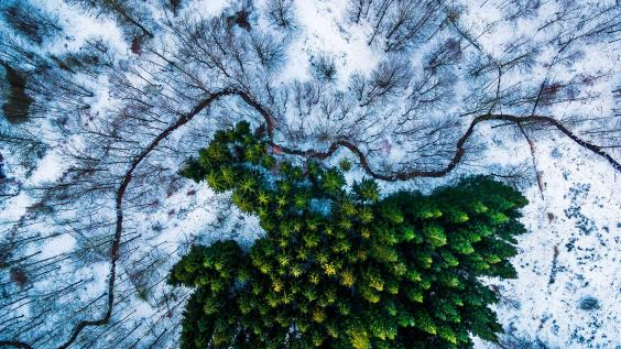 dronestagram-1.jpg