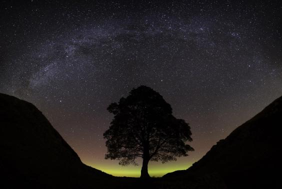 milky-way-over-sycamore-gap-in-the-northumberland-international-dark-sky-park-credit-alan-wallace.jpg