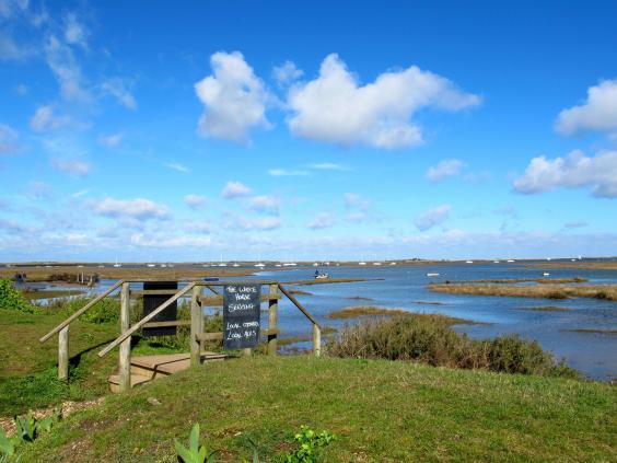 the-white-horse-brancaster-staithe-bottom-of-the-garden-looking-across-tidal-marsh-to-golf-course-on-horizon-img-2711.jpg