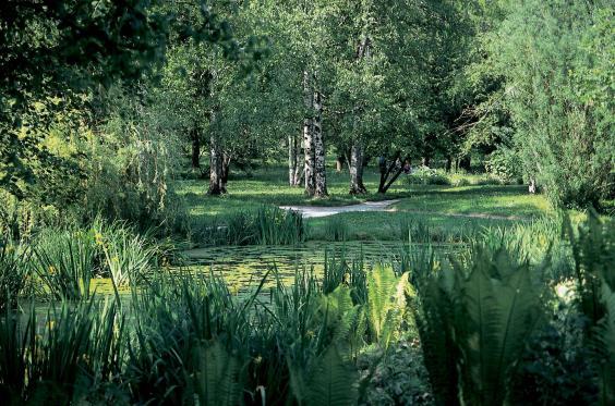 botanical-garden-j.bavcon-2569-orig.jpg