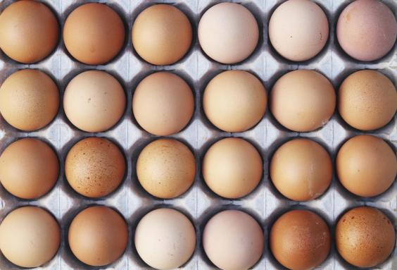 tray-of-eggs.jpg