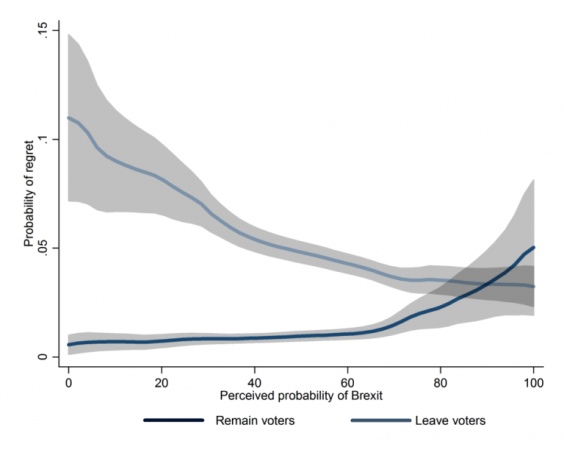 british-election-study-regrexit.png