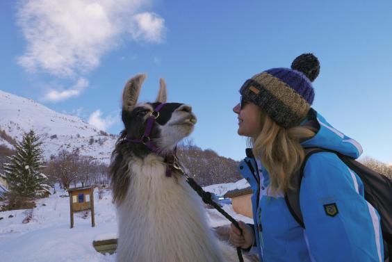 tchupi-llama-and-mary-valloire-cadam-batterbee.jpg
