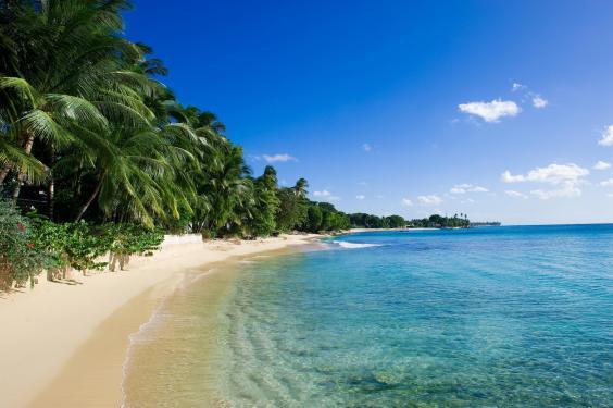 beach-barbados.jpg