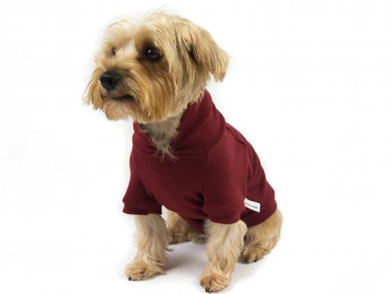 berkley-hoodie-bobbear.jpg