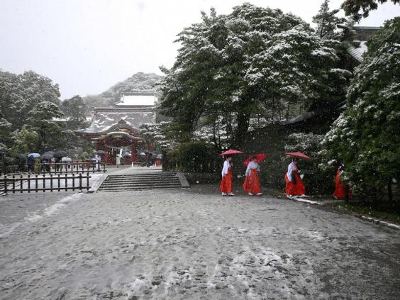 Image result for tokyo snow