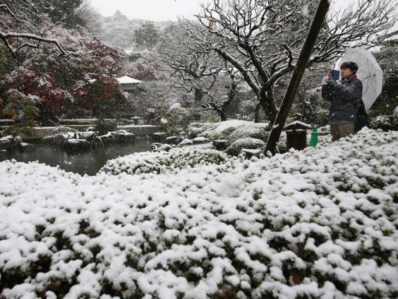 japan-snow-4.jpg
