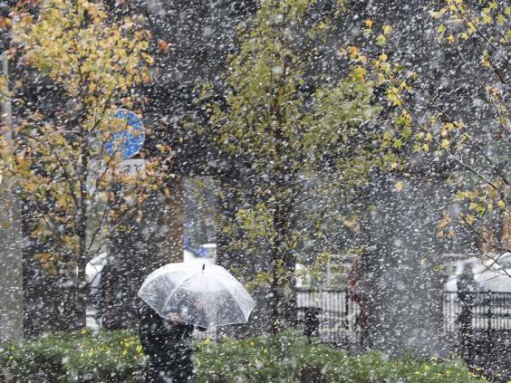 japan-snow-6.jpg
