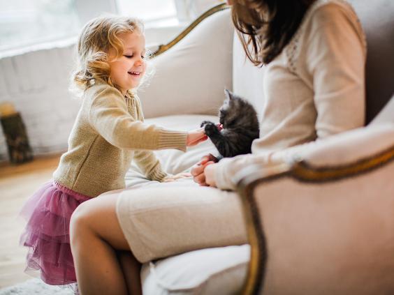 happy-kitten-owner.jpg