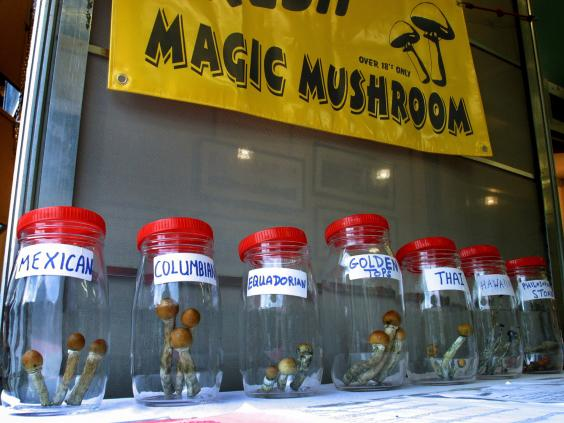 magic-mushrooms.jpg