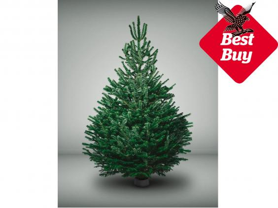 14 best real Christmas trees | The Independent