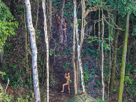 tribe-amazon-brazil.jpg