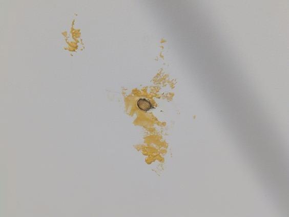 bourbon-argos-bullet-holes-1.jpg