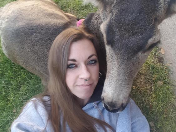 pet-deer-2-taryn.jpg