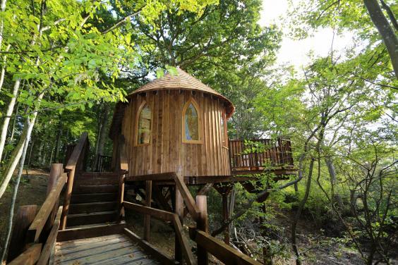 glamping-hoots-treehouse.jpg