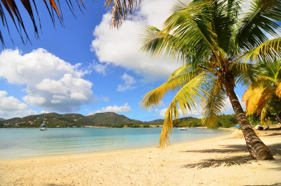 well-bay-beach-surfsong-villa-resort-bvi.jpg