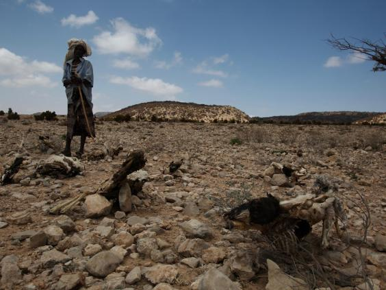 somaliland-5.jpg