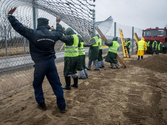 hungary-new-fence.jpg