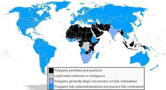 percentage of polygamy in saudi arabia