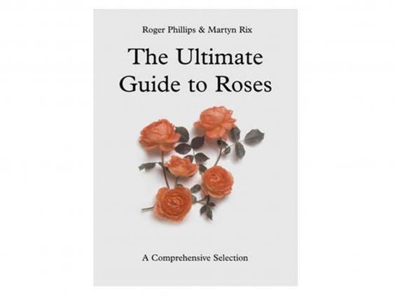 guide-to-roses.jpg