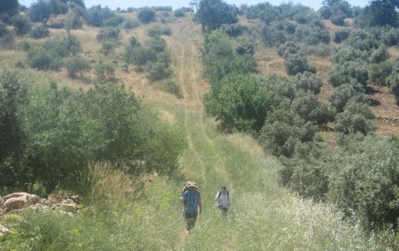 jordan-trail-6.jpg