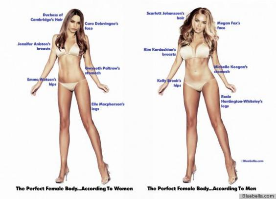 here are the perfect male and female bodies, according to men and, Human Body