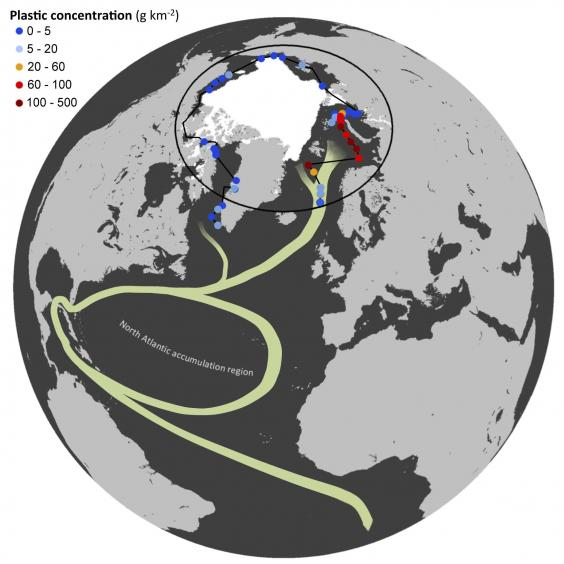 Plastic pollution builds up in Arctic waters