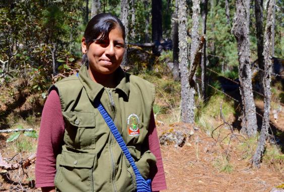 pueblos-guide.jpg