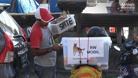 balinese-dog-meat-seller.jpg