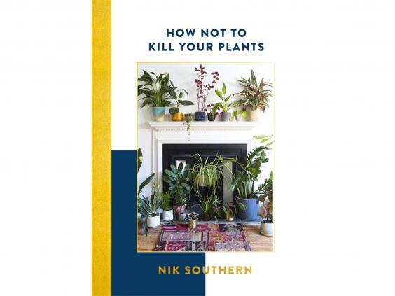 how-not-to-kill-your-plants.jpg