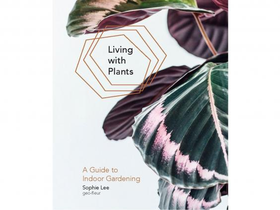living-with-plants.jpg