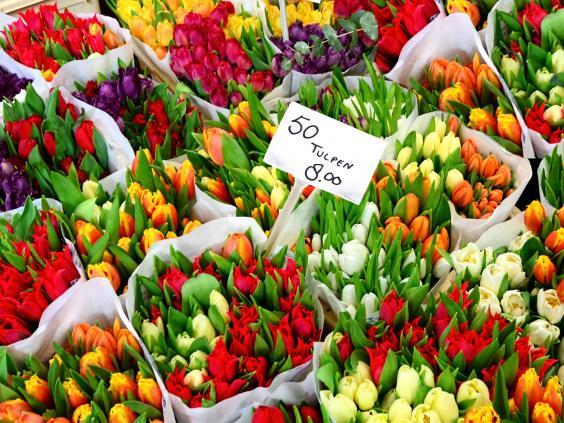 amsterdam-flower-market.jpg