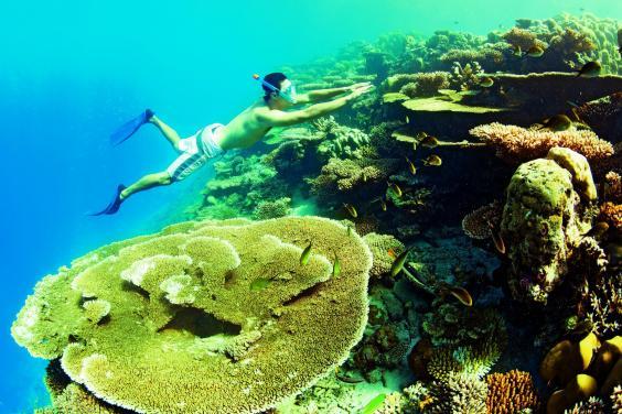 diving-kanuhura1.jpg