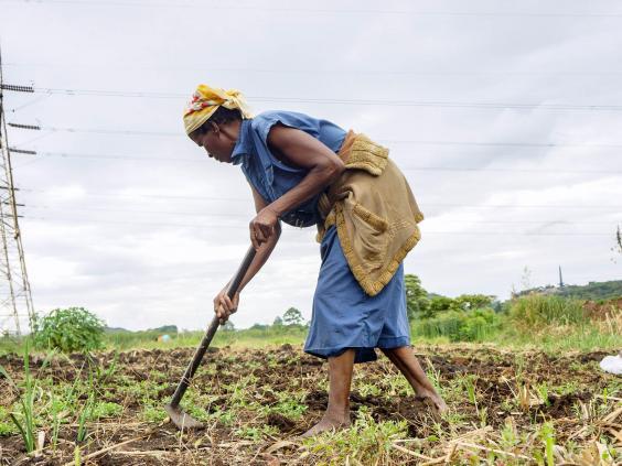 zimbabwe-woman.jpg