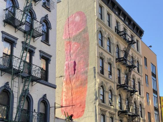 Five-storey-high penis street art by Swedish artist Carolina Falkholt appears in New York City