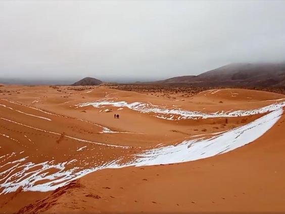sahara-snow2.jpg