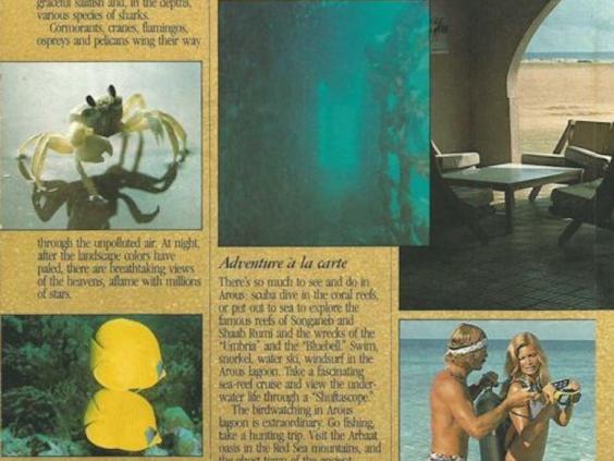 arous-brochure.jpg