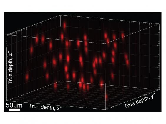 hologram-brain.jpg