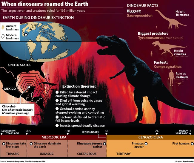 the big question  why did dinosaurs die out  and why should it matter 65 million years later