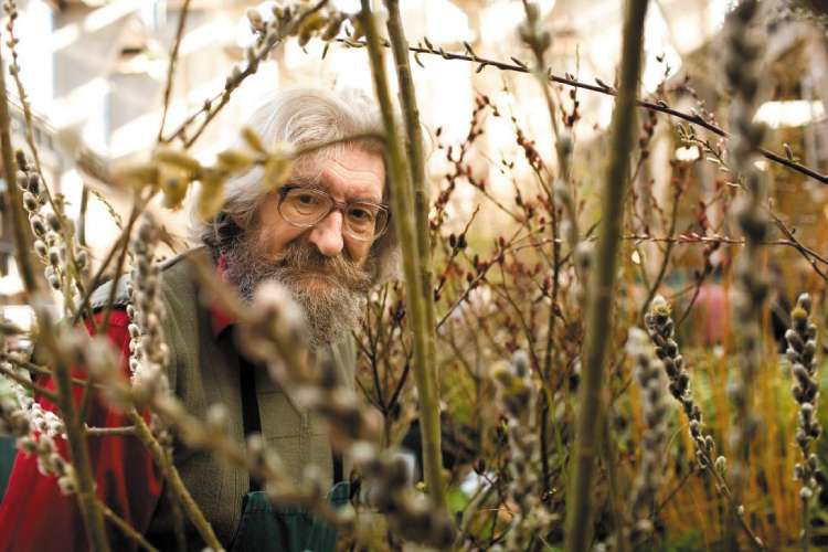 Trevor Wood with a small selection of his willows at this month's RHS London Flower Show © Dominick Tyler