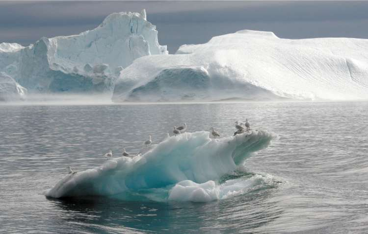 UNEP warned that further ice loss could have dramatic consequences, particularly in India